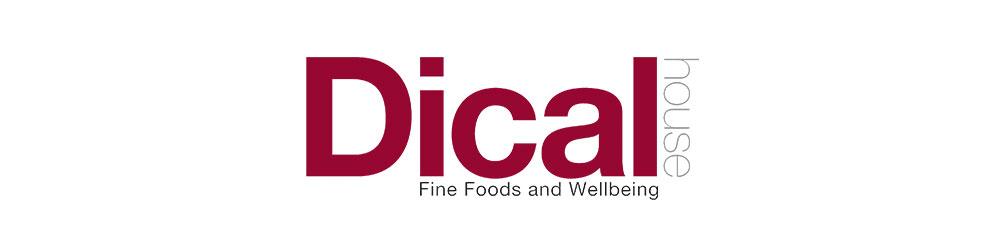 Dical logo web