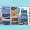 Aquamarine Flyer